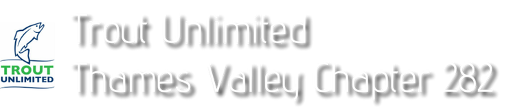 Trout Unlimited: Thames Valley Chapter